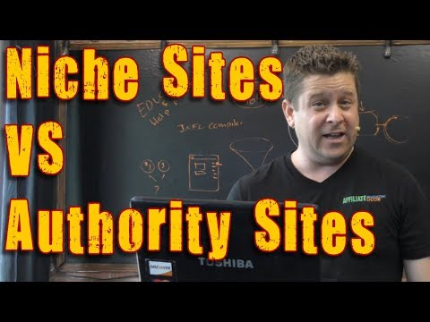 Turn A Small Niche Site Into A Super Profitable Authority Site By Doing This…